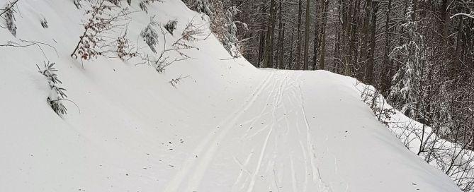 Skilanglauf 30