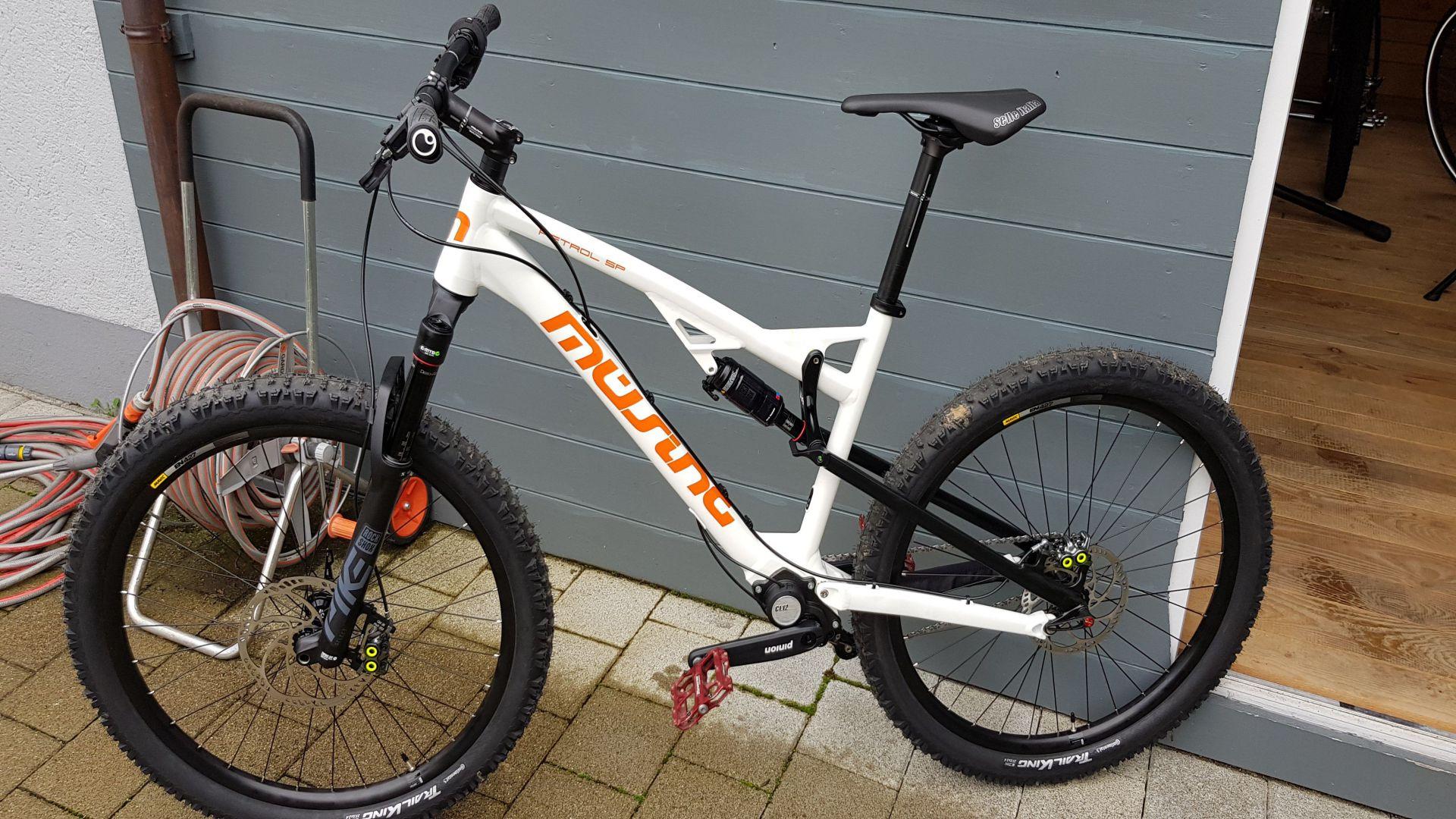 Pinion Fully Bike 02